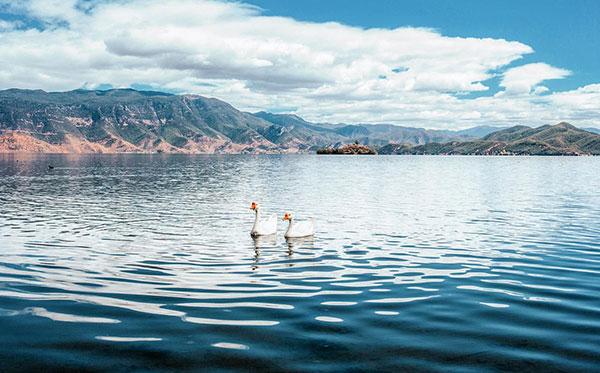川藏线自驾游包车-泸沽湖